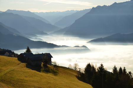 Заставки горы, туман, утро, леса