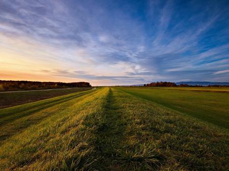Фотографии небо, поле, трава