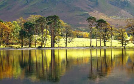 Заставки озеро, деревья, пейзаж