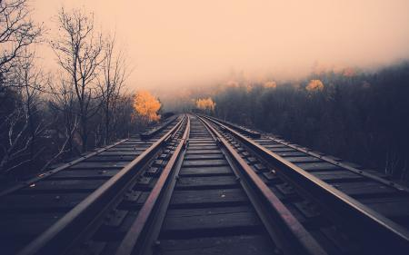 Обои дорога, рельсы, осень, путь