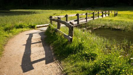 Фотографии дорога, забор, поле, река
