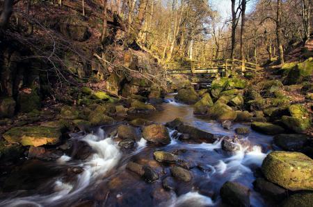 Заставки весна, лес, река, поток
