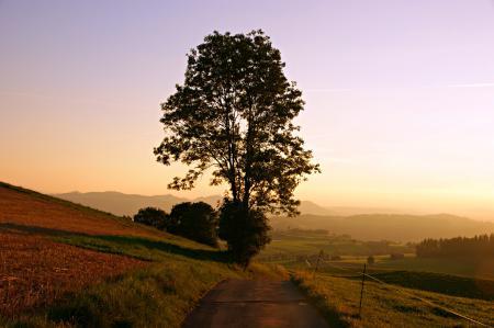 Картинки Дорога, рассвет, утро, солнце