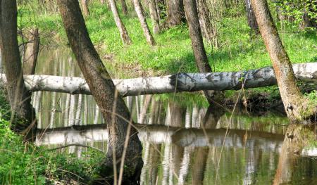 Обои природа, красота, река