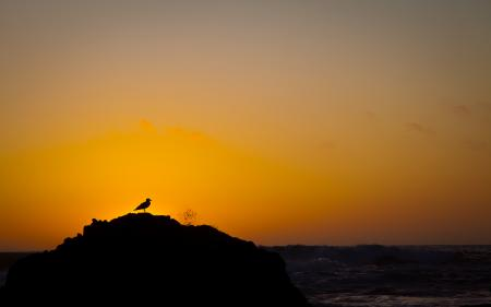 Картинки закат, солнце, вода, океан