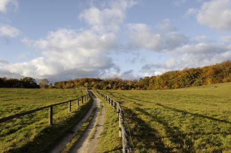 Обои поля, забор, изгородь, дорога