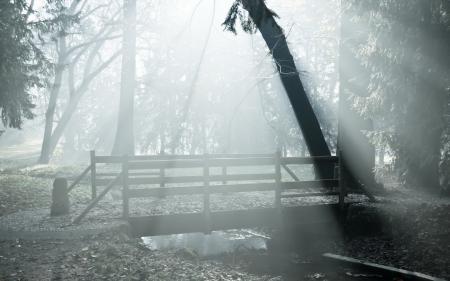 Фото парк, мост, туман, пейзаж