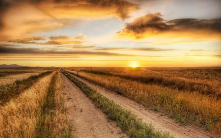 Картинки закат, поле, дорога, пейзаж