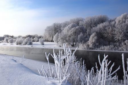 Картинки зима, река, деревья, снег