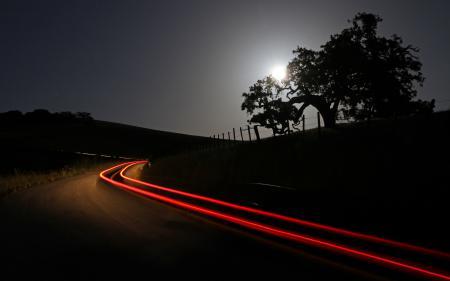 Фотографии ночь, дерево, дорога, свет