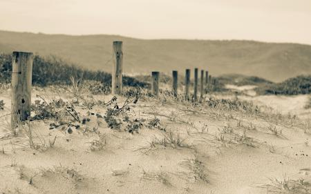 Картинки дюны, забор, природа