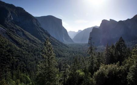 Обои горы, лес, природа, пейзаж