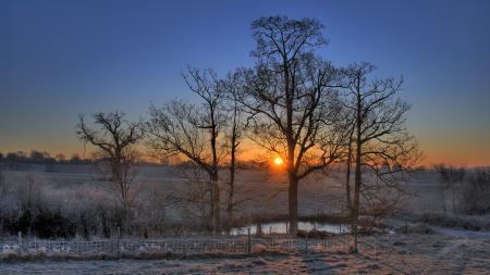 Фото деревья, закат, вечер, иней