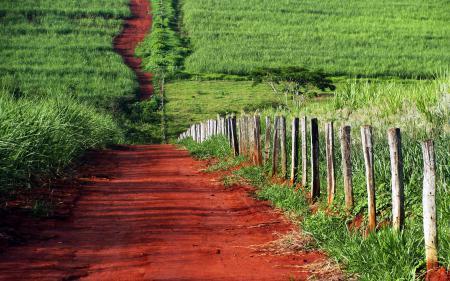 Обои дорога, забор, поле, лето