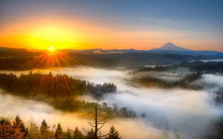 Заставки закат, туман, небо, природа