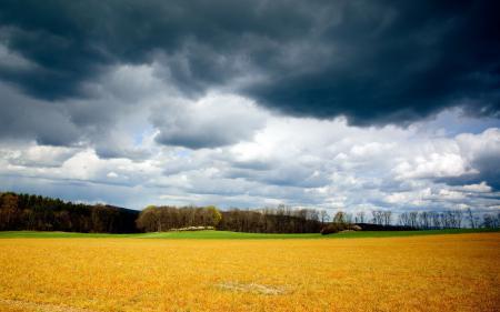 Фотографии поле, небо, тучи, природа