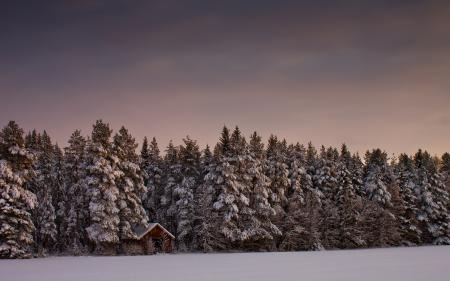 Картинки пейзаж, природа, зима, снег
