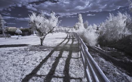 Фото infrared, пейзаж, природа