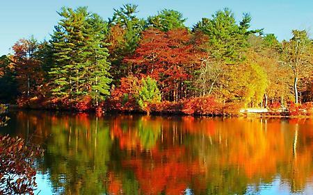 Фотографии осенний, смешанный лес, отражение в воде, цветная гладь