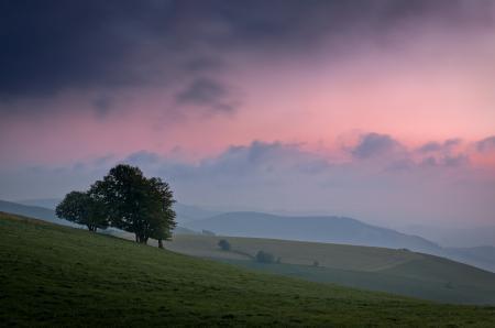 Обои склон, холмы, деревья, небо
