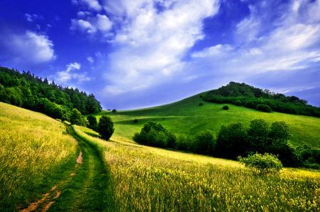 Фото небо, облака, поля
