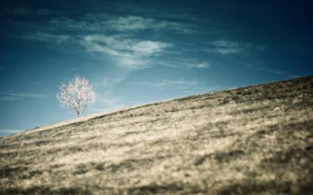 Фото пейзаж, природа, холмы, склоны