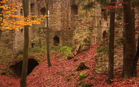 Обои лес, осень, руины