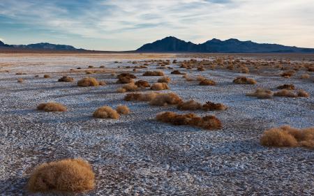 Фото Сергей Доля, пейзаж, пустыня, степь