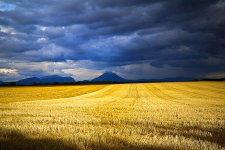 Фотографии небо, облака, поле, скошено