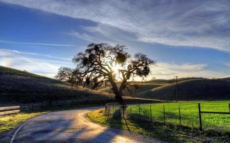 Заставки дорога, дерево, небо, пейзаж