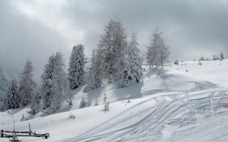 Фотографии зима, снег, природа, пейзаж