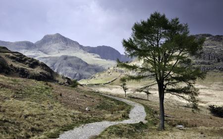 Заставки горы, дорога, дерево, пейзаж