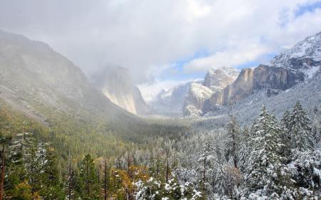 Фотографии горы, деревья, пейзаж