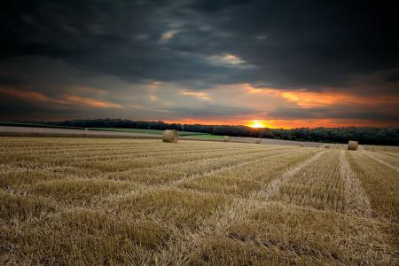 Обои закат, поле, сено, природа