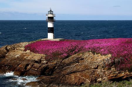 Фотографии Pancha Island, Galicia, Spain, Illa Pancha