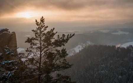 Фотографии горы, дерево, закат, пейзаж