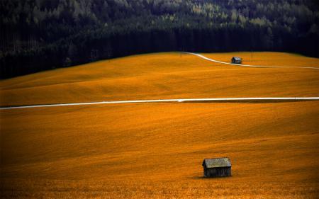 Картинки пейзажи, обои, поле, дома