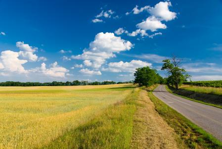 Картинки поле, дорога, облака, небо