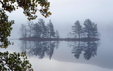 Фото озеро, деревья, туман, пейзаж