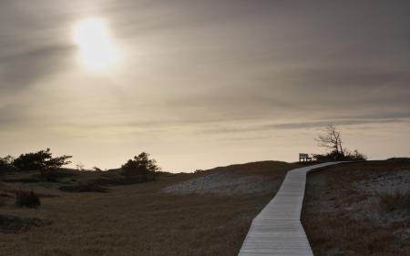 Фотографии поле, скамья, дорога, пейзаж
