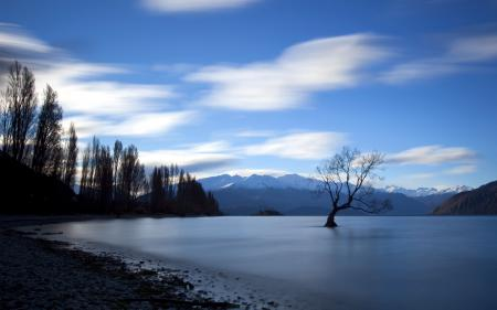 Фотографии озеро, дерево, закат, пейзаж
