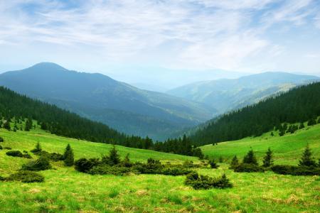 Обои горы, зелень, холмы, деревья