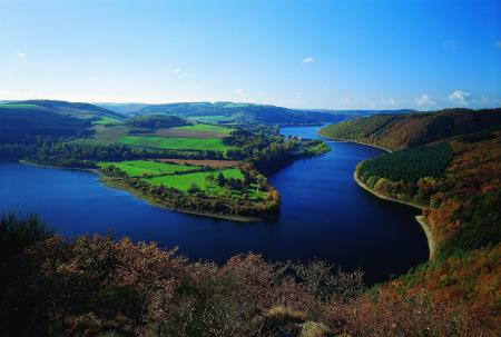 Обои река, лес, поля, вид