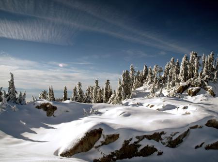 Картинки зима, горы, лес, снег