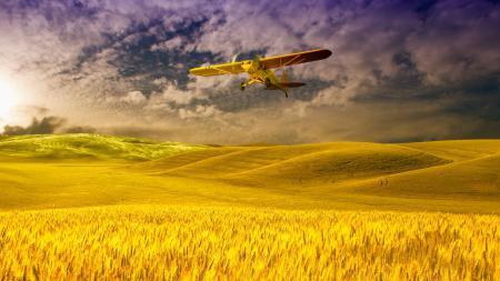 Фото поле, небо, облака, пшеница