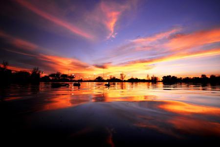 Картинки озеро, утки, закат, небо