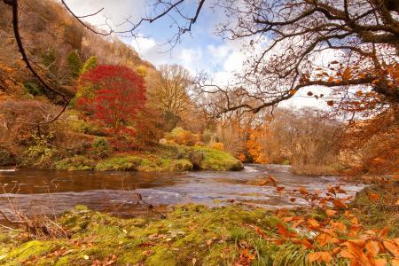 Обои осень, река, течение, берега