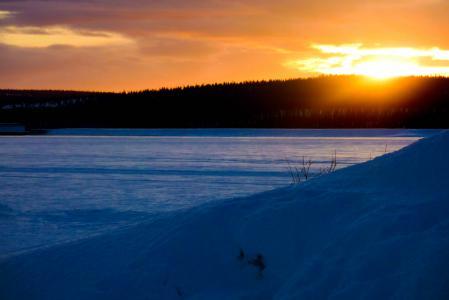 Картинки зима, вечер, закат, лес
