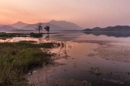 Фотографии закат, трава, озеро, тина