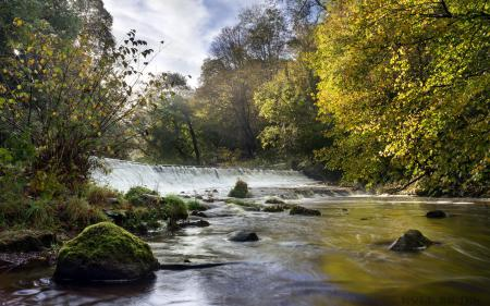 Фото Morning Light, Colinton Dell, Water of Leith, Bonny Scotland